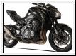 HP Corse Schalldämpfer Evo Extreme Kawasaki Z900 BJ 2017-19