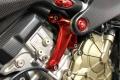 Motocorse Motorhalterung Panigale und Streetfighter V4