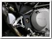 Motocorse Rahmenschutz Paar F4 und Brutale