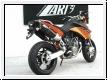 ZARD Schalldämpfer-Paar KTM 990 SM