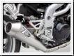 ZARD Schalldämpfer Triumph Speed Triple 2002-04